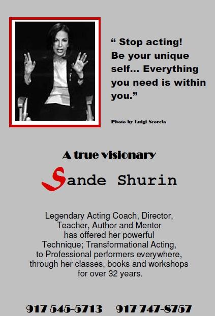 Sande Shurin Brochure